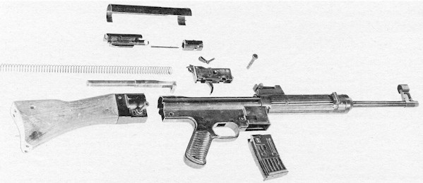 g3stg45strip.jpg (37122 bytes)