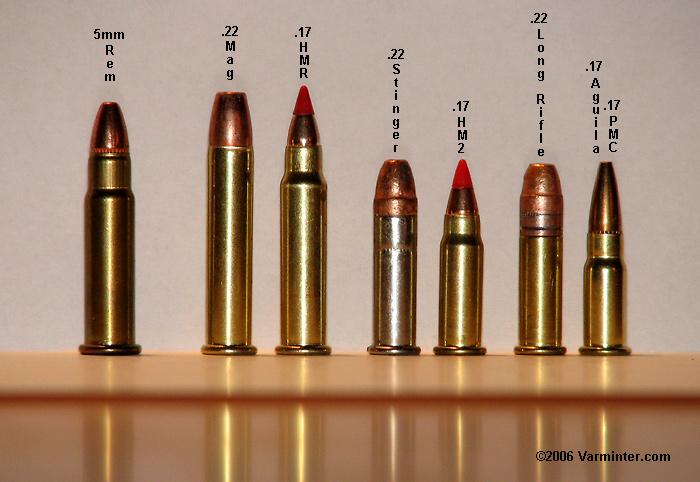 .22 Magnum....