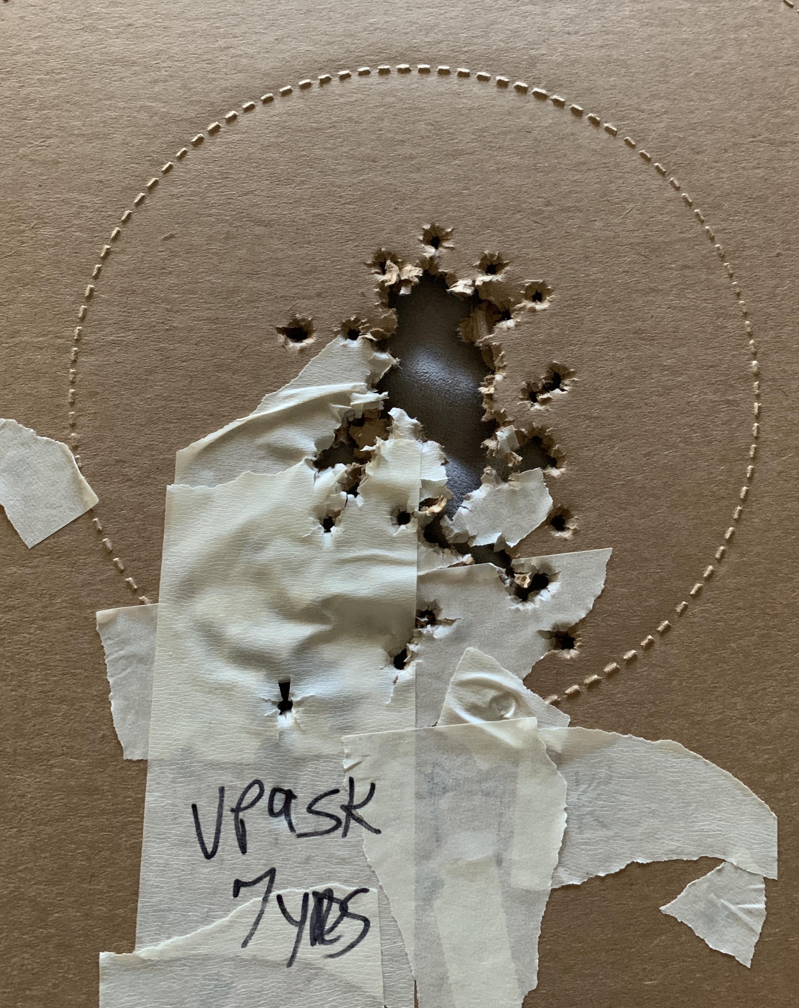 NGD - HK VP9SK LE  - Will it replace my VP9-B-vp9sk-100-rounds.jpg